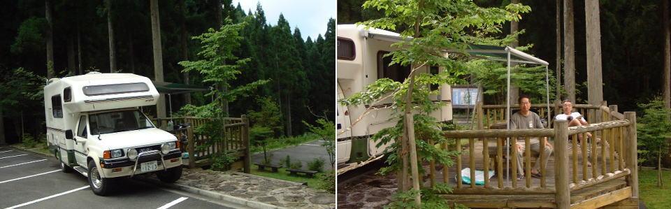 西粟倉の若杉天然林