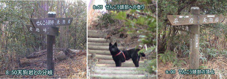 2005_01_29_03image