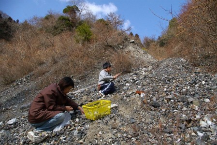 藤ヶ谷鉱山のズリ跡