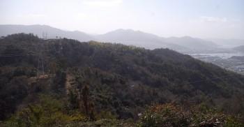 海田と岩滝山から242mピークへの尾根