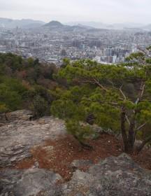 尾長山の下りから市内を眺望