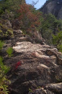 岩にペンキで印があります