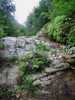 大きなナメラ岩があります