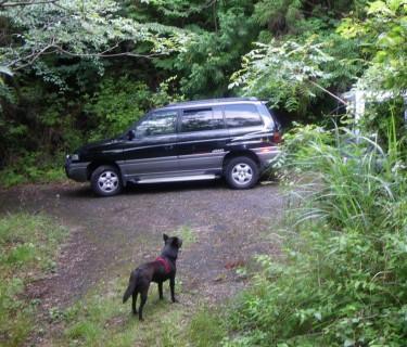 林道に車を駐めます