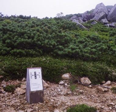 11:00 赤木岳の山頂