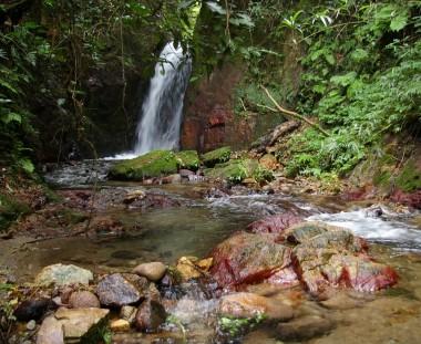 川の上流には小さな滝があります