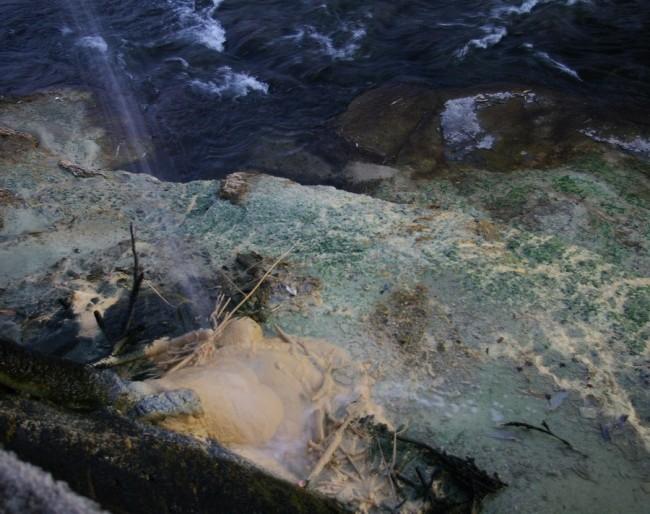 川には温泉からの排水で堆積物が山のよう