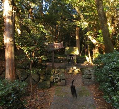 林道の途中にある恵比寿神社