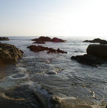 温泉は海の中です