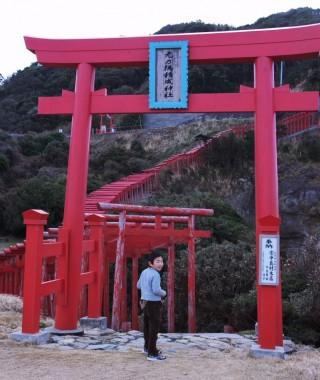 元乃隅稲荷神社の鳥居が崖の上まであります