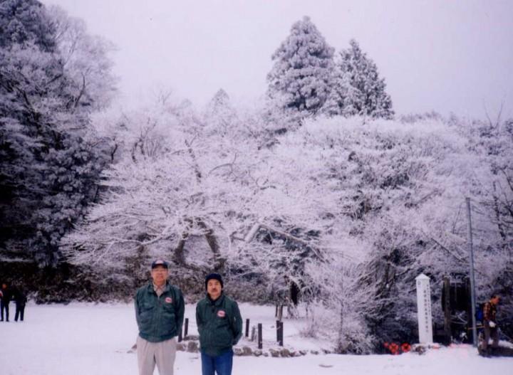 樹氷になっていました