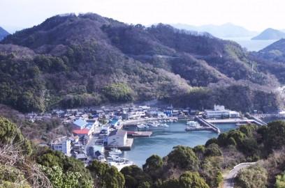 ナガタニ展望台から岡村港
