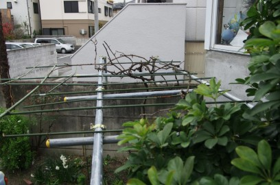 玄関階段の手摺から塀に単管を渡す