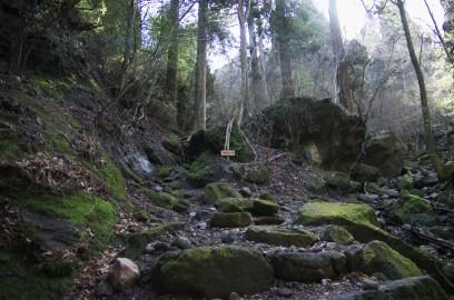 9:27 岩がゴロゴロした歩きにくい道