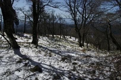 山頂付近は雪