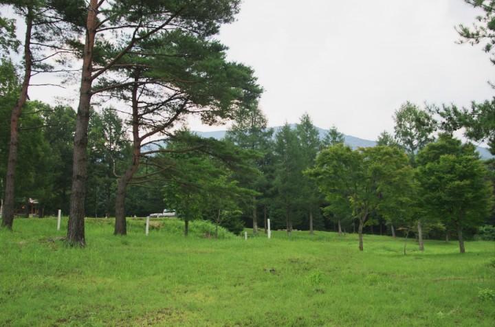 併設されているキャンプ場も整備されていて、多くのキャンプをする人たちがいた