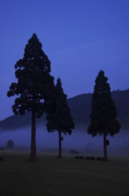 大山の鏡ヶ成で夜霧が高原を覆う