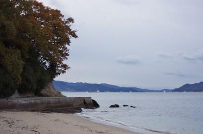 海岸は秋の終わりを惜しむような紅葉
