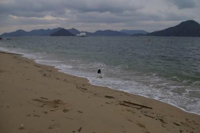 海のザブン・・・波にもまれます