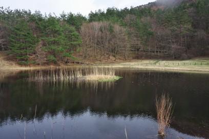 北の原 姫逃の池
