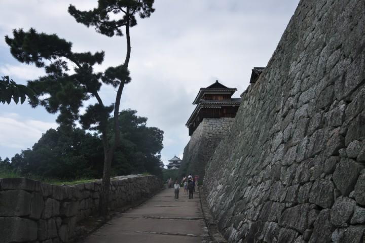 久しぶりの松山城 大きな城ですね