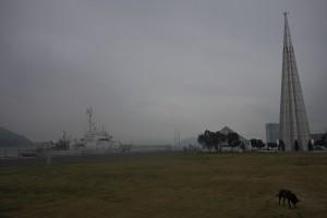 空はどんより 今日は一日中雨らしい