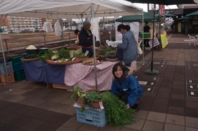 春木農園さんが春の七草を無料提供(?)