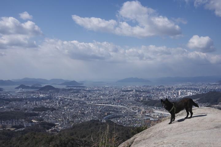 岩谷観音の大岩から市内を眺めるカイ