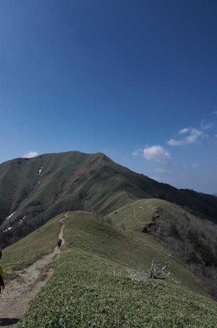 剣山から次郎笈への稜線 熊笹が広がる