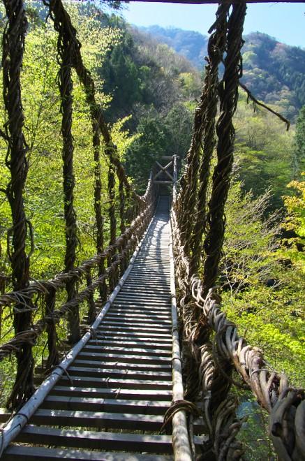祖谷に下るが途中で奥かずら橋に(¥550)