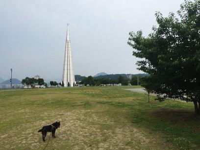 朝は宇品波止場公園にカイと散歩