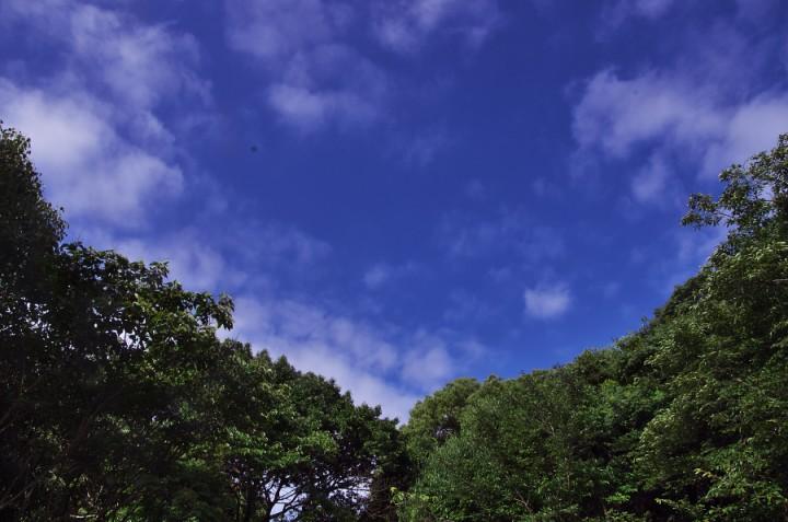 空の様子はすっきりとしているが湿気が多い