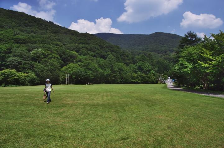 真夏の県民の森 標高があるので意外と暑くない