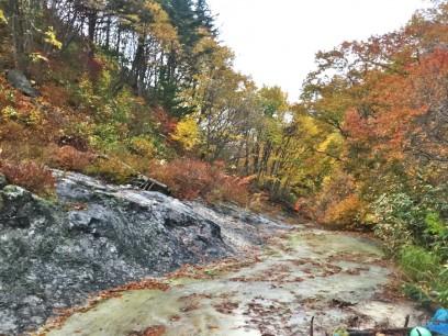 周囲は秋の真っ盛り