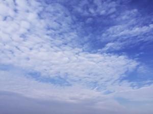 空はうろこ雲 天気は下り坂か