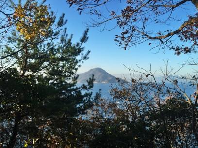 眺めの良かった岬も木が生い茂り