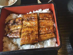 大根島で鰻を昼食に