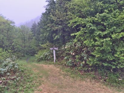 9:10 林道が終わり山道が急になる