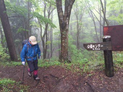 9:36 越原峠で比婆山への縦走路に合流