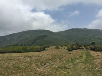 12:17 大膳原に下るとガスが晴れて、烏帽子山と比婆山が正面に