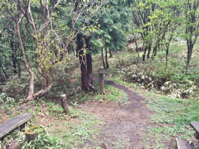 12:24 大膳原の分岐 これから烏帽子山への登り