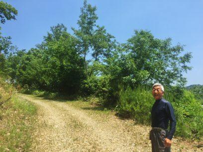 建設地の里山への道で 地主のVFK