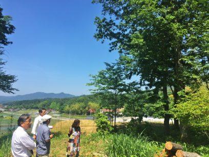 眺めの良い里山 熊笹が綺麗です