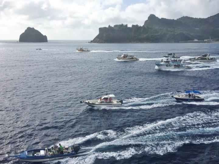父島の観光船達が港の外まで送ってくれます 最後はダイビングして
