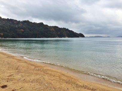 桂浜をカイと散歩